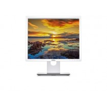 Dell P1917S - LED-Monitor
